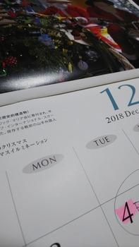 DSC_4480.JPG
